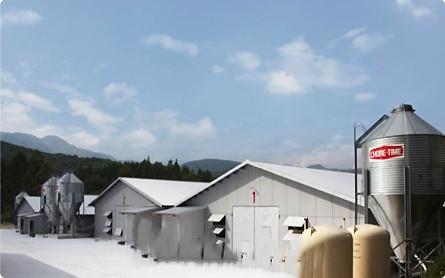 ブロイラー飼育農場